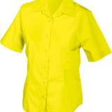 JN603_yellow_F