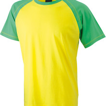 JN010_yellow-frog_F